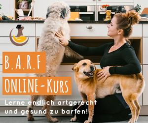 Lerne was du brauchst um deinen Hund endlich artgerecht & fehlerfrei zu  BARFEN